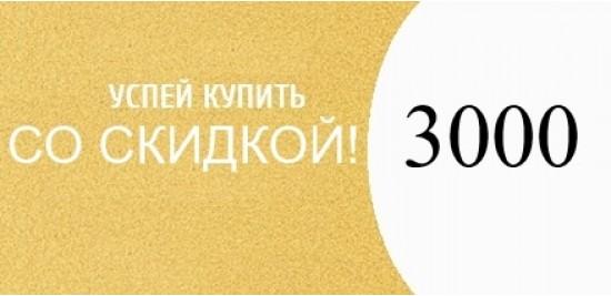 Скидка 3000
